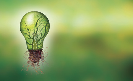 Banner Renewable energy concept - Eco light bulb with leaf and branches inside and roots