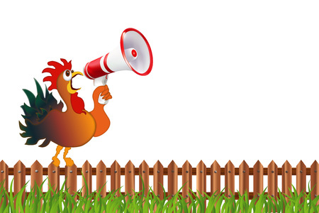Colored rooster screaming in a megaphone. Humorous vector isolated illustration