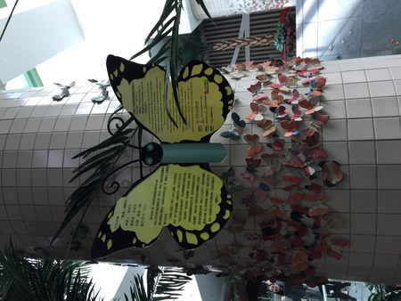 Butterfly Display Editöryel