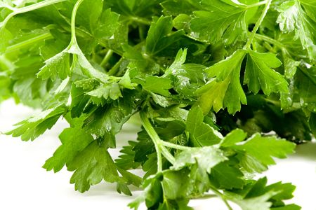 Close up picture of some fresh green parsley