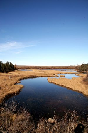 Labrador Landscape in fall