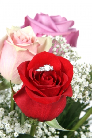 will you marry me: Wedding Ring in Rose, Will you marry me?