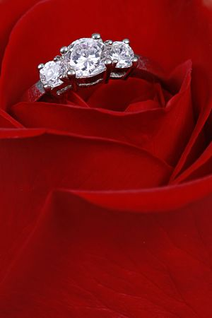 Wedding Ring in Rose, Will you marry me? 版權商用圖片 - 4180207