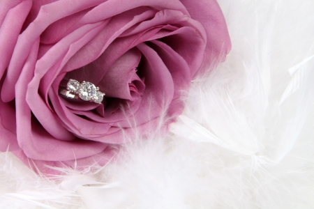 Wedding Ring in Rose, Will you marry me? 版權商用圖片 - 4686045