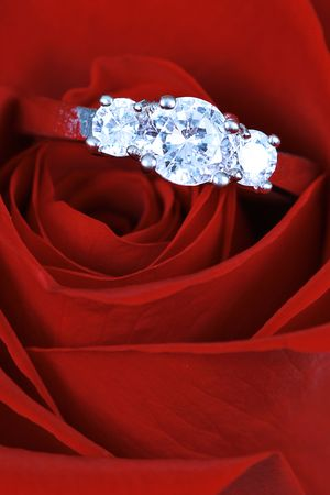 Engagement ring in taken closeup in red rose photo