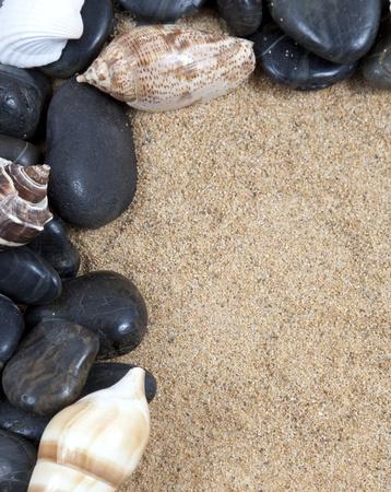 Nice sea shells on the sandy beach taken closeup, Shell border or frame photo
