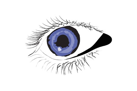 Vector of persons blue eye on white background