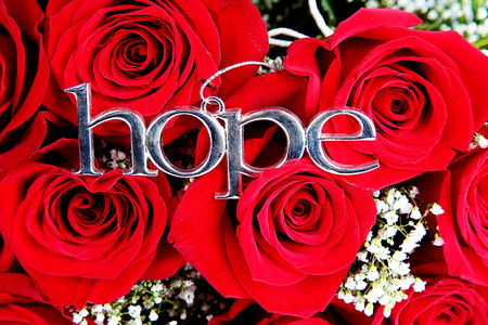 Red roses with hope sign