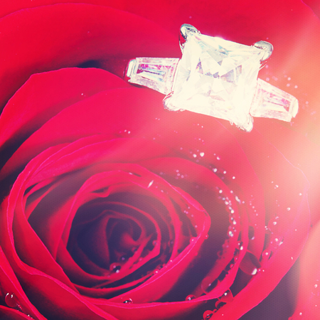 wedding ring in red rose with vintage effect photo