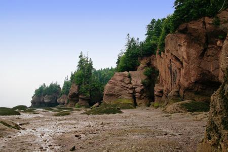 Hopewell Rocks in Canada photo
