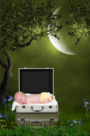 baby sleeping in case with conceptual nature art