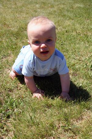 cutie: Little Cutie in Grass Stock Photo