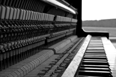 fortepian: Czarno-biały fortepian