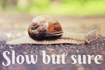 but: Slow but sure