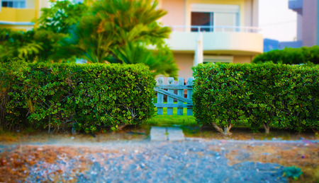Small garden gate colorful fairy photo with tilt shift effect Stock Photo