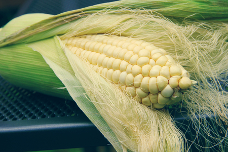Open ear of corn with tops close uo macro photo