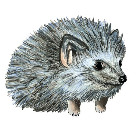 Illustration hand drawing cartoon hedgehog cute blue