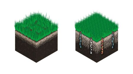 Lawn care, soil isometry, stages before and after aeration. Effect on the intake of substances - water, oxygen and nutrients for grass nutrition. Vector illustration isolated on a white background.