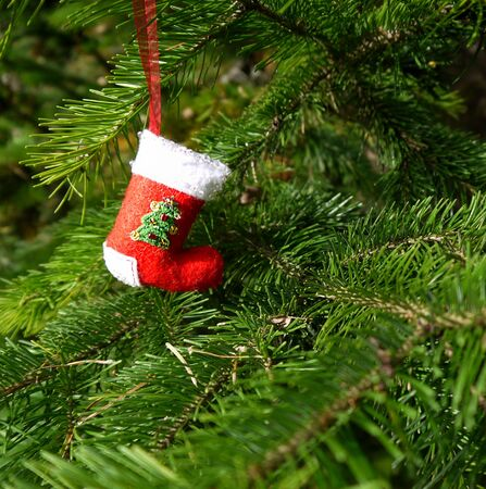 Christmas felt decoration on a spruce branch. Handmade bauble figurines a sock. Holiday background with a copy space. Stock fotó