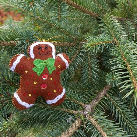 Christmas felt decoration on a spruce branch. Handmade bauble figurines of gingerbread. Holiday background with a copy space.