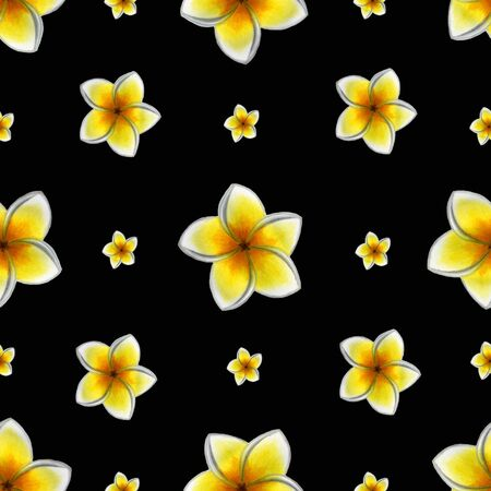Seamless pattern of cute tropical plumeria on a black background. Bright summer watercolor illustration of hand drawing, used for fabric, wallpaper, packaging.