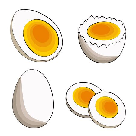 A set of four soft-boiled eggs - half, in shell, sliced and whole. Vector stock illustration in flat cartoon style on a white background. Suitable for web, icons and banner