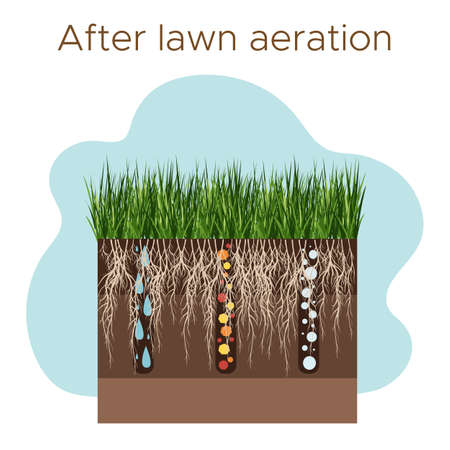 Lawn care - aeration and scarification. Labels by stage-after. Intake of substances-water, oxygen, and nutrients to feed the grass and soil. Vector flat illustration isolated Vetores