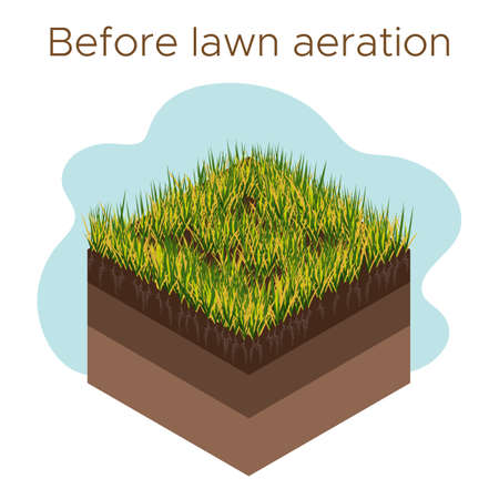 Lawn care - aeration and scarification. Labels by stage-before. Intake of substances-water, oxygen, and nutrients to feed the grass and soil. Vector isometric illustration isolated Vettoriali