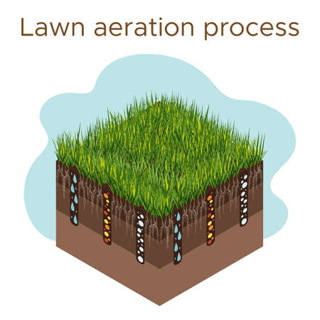 Lawn care - aeration and scarification. Labels by stage-during. Intake of substances-water, oxygen, and nutrients to feed the grass and soil. Vector isometric illustration isolated Vettoriali
