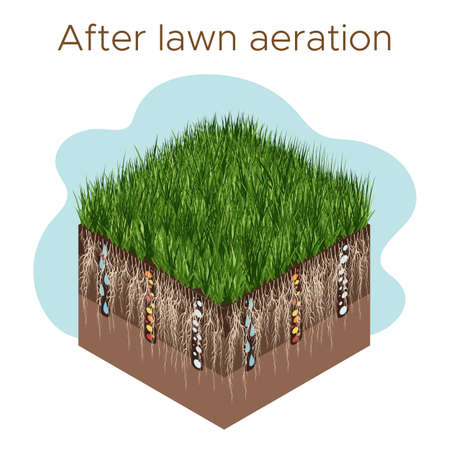 Lawn care - aeration and scarification. Labels by stage- after. Intake of substances-water, oxygen, and nutrients to feed the grass and soil. Vector isometric illustration isolated