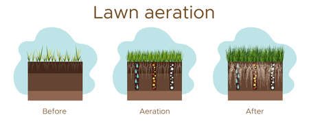Lawn care - aeration and scarification. Labels by stage-before, during, and after. Intake of substances-water, oxygen, and nutrients to feed the grass and soil. Vector flat illustration - horizontal