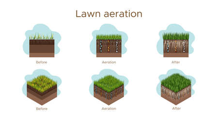 Lawn care - aeration and scarification. Labels by stage-before, during, and after. Intake of substances-water, oxygen, and nutrients to feed the grass and soil. Vector isometric and flat illustration isolated.