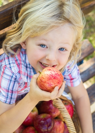 Cute happy child with a basket of delicious red apples outdoors. photo