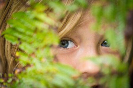 Young child peeking through bushes Standard-Bild
