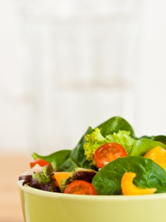 fresh salad before light background, copyspace Stock Photo - 18219404