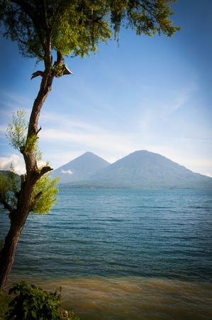 Tree and Mountain in Guatemala Stock Photo