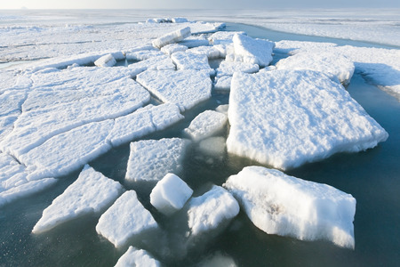 hummock: Ice hummocks swim in the sea.