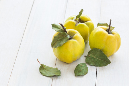 quince: Quince fruits on a white wooden background. Quince fruits.