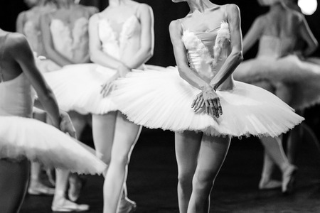 swan on the lake: Ballet swan lake. Hands of ballerinas. Ballet statement. Great ballerinas. Ballerinas in the movement. Stock Photo