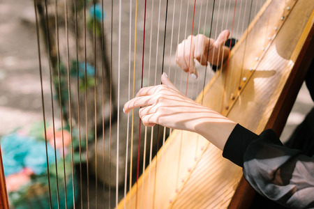 Hands of the woman playing a harp. Symphonic orchestra. Harpist close up.