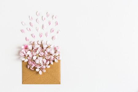 retro flowers: opened craft paper envelope full of spring blossom sacura flowers on white background.