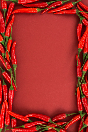 the red hot chilly pepper which are laid out by a frame on a red background. a concept of spicy food: paprika seasoning and the red hot peppers. top view, flat lay.
