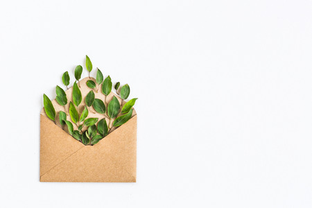 envelope: opened craft paper envelope filled with green leavess on white background. healthy lifestyle offer. Care about environment. Recycling and using trees and nature resources concept. Fresh concept. Stock Photo