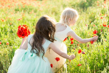 little girl model, wedding fairytale concept - on the meadow two young girls bridesmaid take a flower of poppies for the brides bouquet, dressed in festive fancy dress white and soft blue color Imagens
