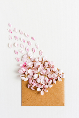 close up of opened craft paper envelope full of spring blossom sacura flowers on white background. top view. concept of love. Flat lay. Stock Photo
