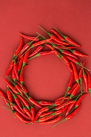capsaicin: red hot chili peppers, popular spices concept - red hot chili peppers pods in beautiful circle composition of a colorful area on red background, top view, flat lay, free space for text, vertical