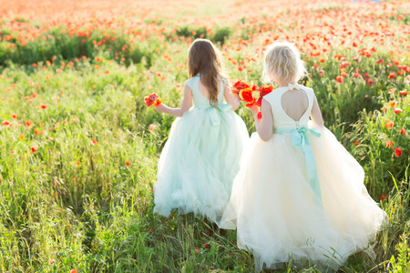 little girl model, fashion concept - two little girls walking in white and blue wedding dress on the background of field with poppies, the model turned their backs and holding a bouquets of poppy