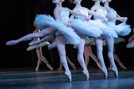Schönheit, Beweglichkeit, Tanzkonzept. Arm in Arm vier elegante und anmutige weibliche Balletttänzerinnen, die die Rollen kleiner Schwäne spielen, synchron bewegen, tanzen und springen Standard-Bild - 83473315