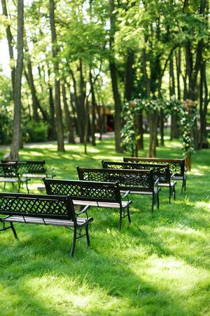 環境、植栽、家具のコンセプト。グッズは、彼らのような金属のバインドされた背部とチョコレート色の小さな庭のベンチ、公園の芝生に立ってい 写真素材