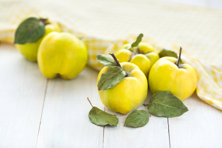 spring, refreshment, harverting concept. close up of beautiful fruits of yellow color with green shades, there are delicious quinces, picked up not that long ago